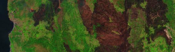 Los incendios de Galicia y norte de Portugal, visibles desde el espacio